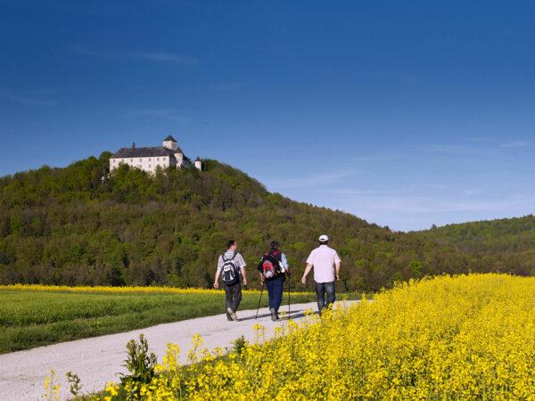 Wandern im Bamberger Land