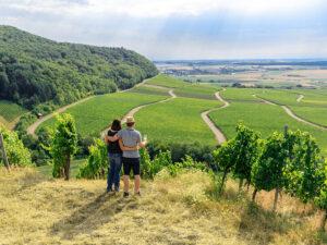 Weinparadies Franken: Hüttenheimer Tannenberg
